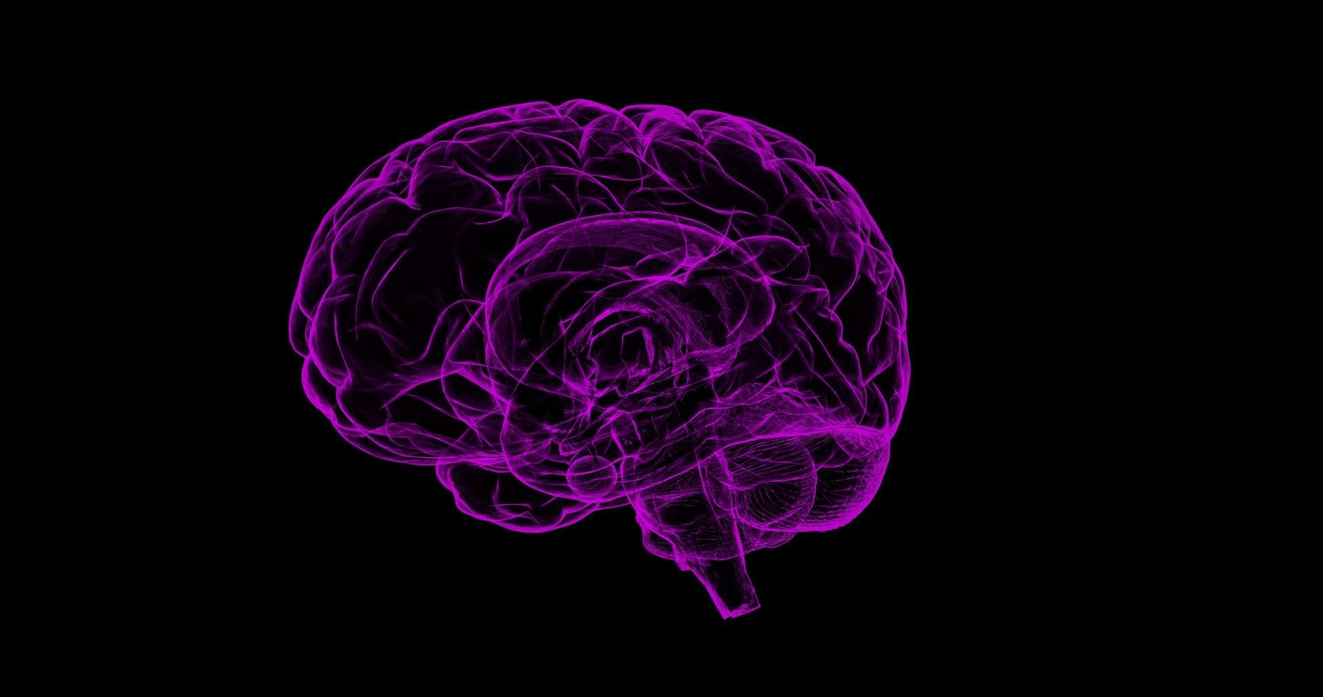 EL AOVE en la prevención del alzhéimer